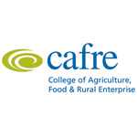 cafre-for-web